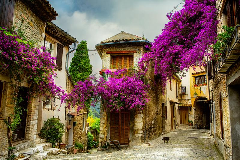 Immobilier en Algérie