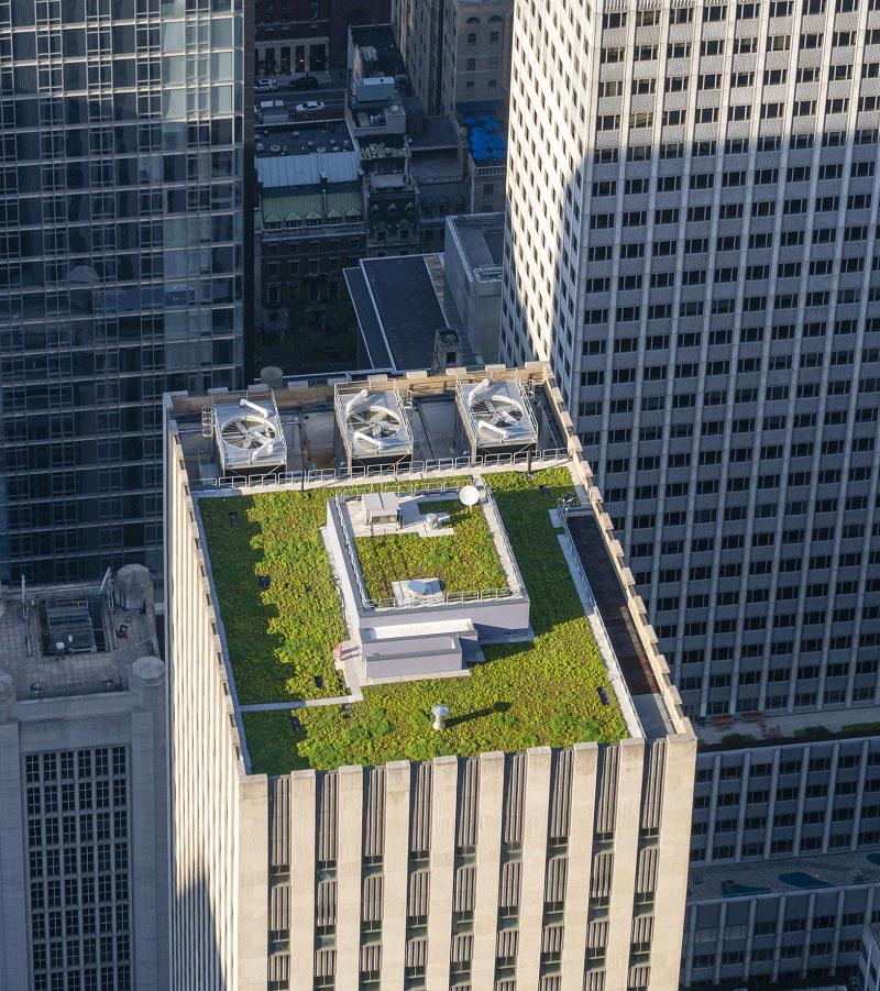 immeuble avec toiture végétalisée
